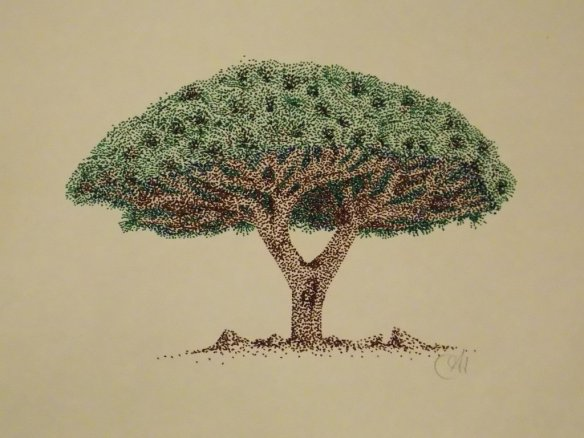 socotra_dragon_tree_by_moontoast-d5zbj4k